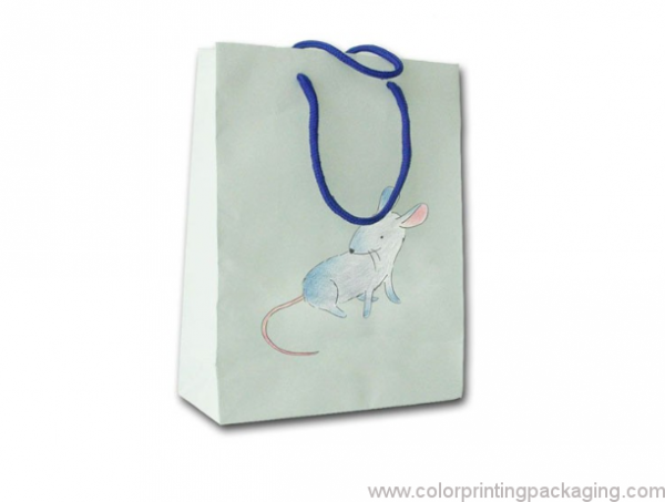 colorful-packaging-paper-shopping-bag-01